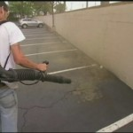 Leaf Blowers and Pollution , 6 Leaf Blower Pollution In Environment Category