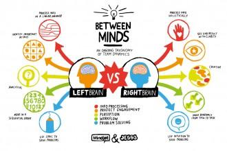 Left Brain VS Right Brain , 8 Left Right Brain Characteristics In Brain Category