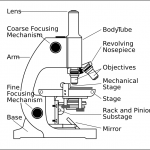 Microscope With Labels clip art , 5 Labeled Parts Of A Microscope In Cell Category