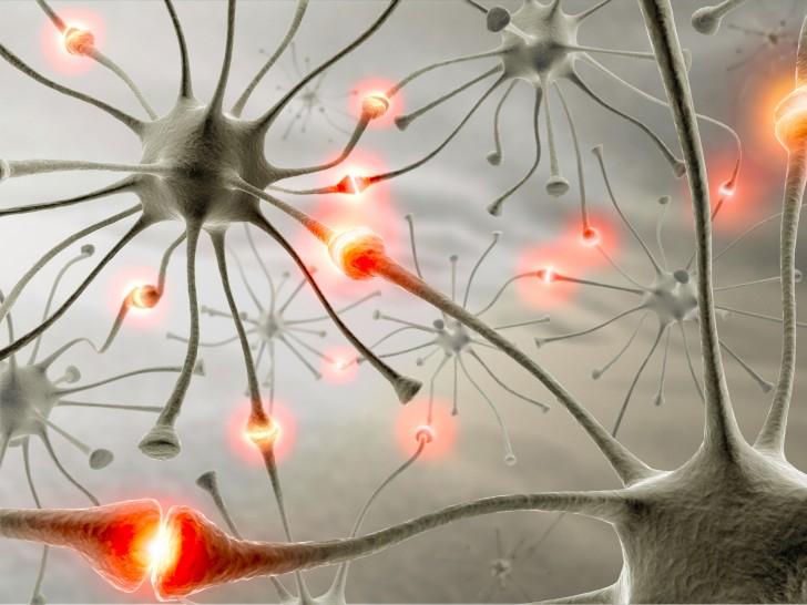 Brain , 5 Brains Synapse Neurons Wallpaper : Synapse Neurons Wallpaper