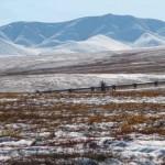 Tundra Biome Photo , 6 Tundra Biome Facts In Biome Category