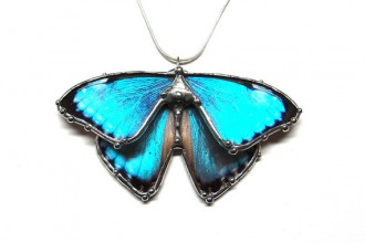 blue morpho butterfly jewelry in Dog