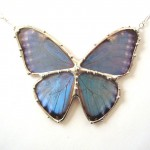 blue morpho butterfly pendant , 7 Blue Morpho Butterfly Necklace In Butterfly Category