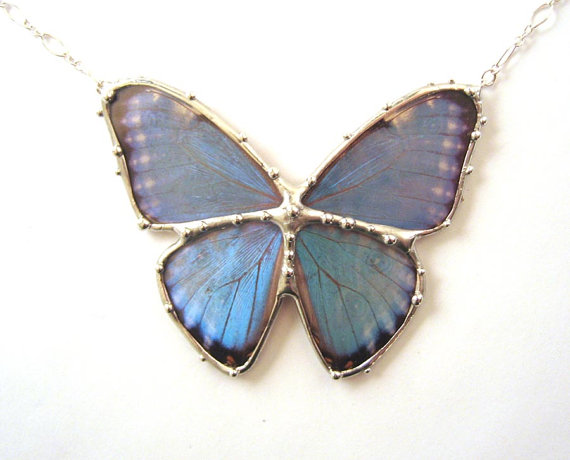 Butterfly , 7 Blue Morpho Butterfly Necklace : Blue Morpho Butterfly Pendant