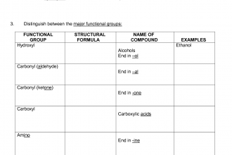 functional groups macromolecules worksheet in Cat