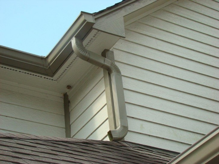 Birds , 5 Leaf Proof Gutters Review : Gutter With Leaf Proof