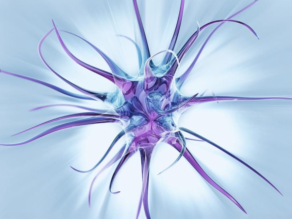 Brain neuron wallpaper