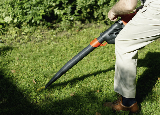 Environment , 6 Leaf Blower Pollution : Leaf Blower Noise Decibels Pollution