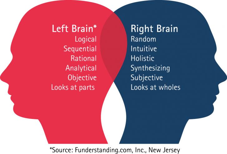 Brain , 8 Left Right Brain Characteristics : Left Right Brain