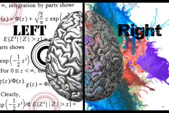 Left Right Brain Characteristics , 8 Left Right Brain Characteristics In Brain Category