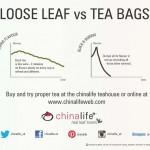 loose leaf vs tea bag flavour , 5 Tea Bag Vs Loose Leaf In Plants Category