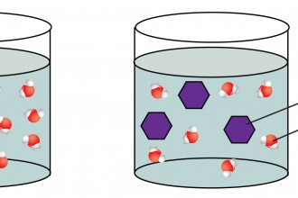 osmosis in Environment