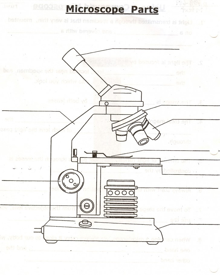 parts of the microscope quizlet   5 parts of the