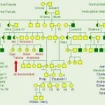 royal hemophilia , 6 Genotype Of Hemophilia In Genetics Category