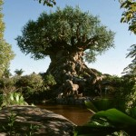 tree of life , 5 Tree Of Life In Plants Category