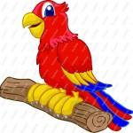 Cartoon Parrot , 7 Nice Parrot Clipart In Birds Category