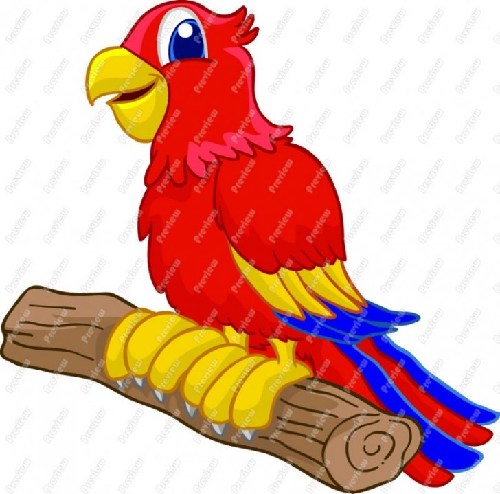 Birds , 7 Nice Parrot Clipart : Cartoon Parrot
