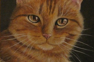 Orange Tabby Cat Painting , 7 Awesome Pictures Of Orange Tabby Cats In Cat Category