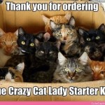 funny picture image , 5 Cute Crazy Cat Pictures With Captions In Cat Category