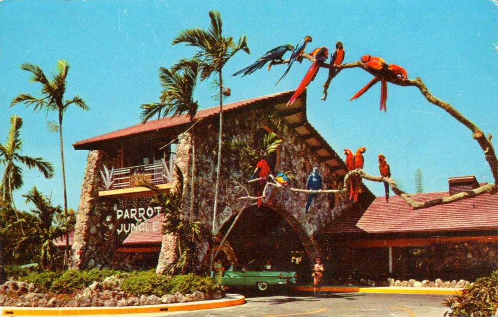 parrot jungle miami