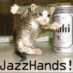 photo fun pic , 6 Best Hilarious Cat Pictures With Captions In Cat Category