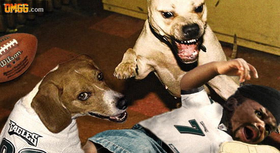 Dog , 6 Popular Michael Vick Dog Fighting Pictures : Pitbull Dog Picture