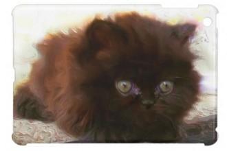 Black Persian Kitten in Reptiles