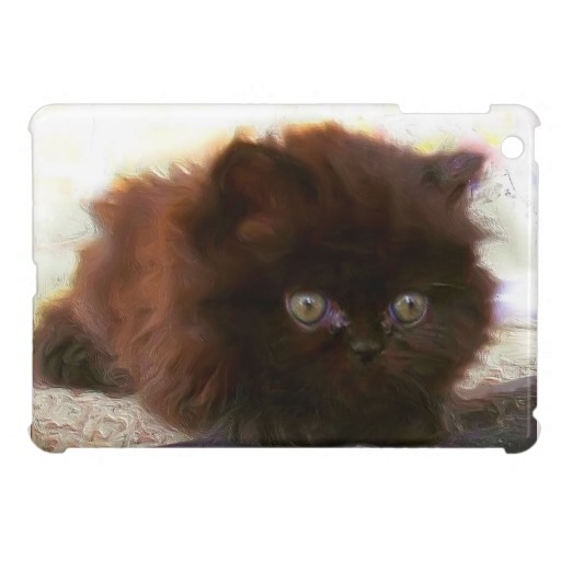 Cat , 6 Cute Mini Persian Cats : Black Persian Kitten