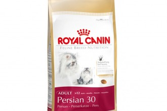 Cat Food , 7 Good Royal Canin Persian 30 Cat Food In Cat Category