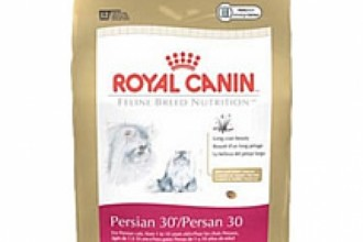 Royal Canin Persian Cat in Plants