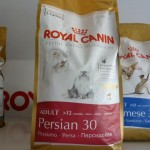 Royal canin adult cat food , 7 Good Royal Canin Persian 30 Cat Food In Cat Category