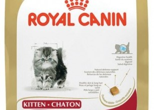 Dog Food Royal Canin , 7 Good Royal Canin Persian 30 Cat Food In Cat Category