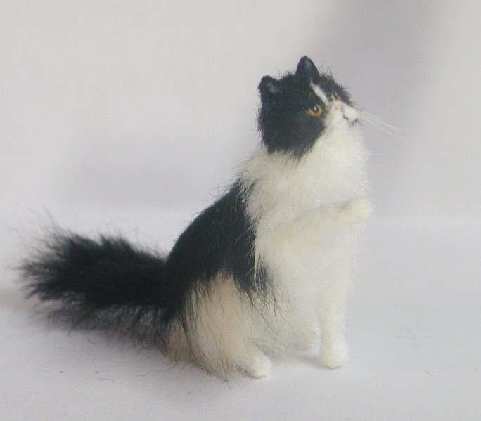 Cat , 5 Fabulous Miniature Persian Cats : Miniature Persian Cat