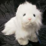 persian cat ganz , 8 Good Stuffed Persian Cat In Cat Category