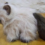 persian cats information , 8 Good Stuffed Persian Cat In Cat Category