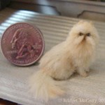 persian shorthair cat , 7 Cute Miniature Persian Cat In Cat Category