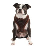 puppia love , 7 Cute Yuppy Puppy Harness In Dog Category