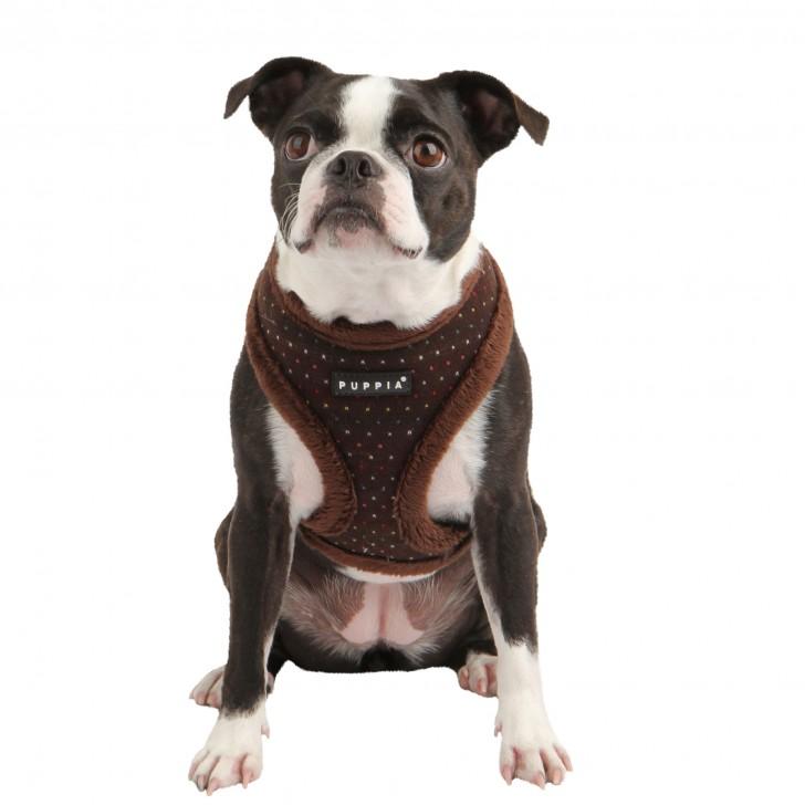 Dog , 7 Cute Yuppy Puppy Harness : Puppia Love