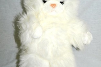 Short Hair Persian Cat , 8 Good Stuffed Persian Cat In Cat Category