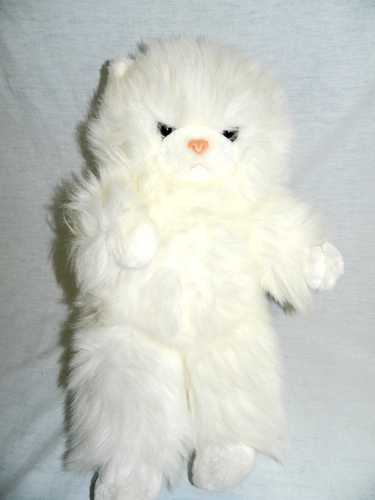 Cat , 8 Good Stuffed Persian Cat : Short Hair Persian Cat