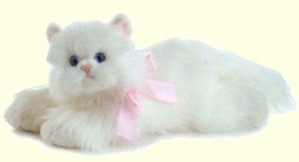 Cat , 8 Good Stuffed Persian Cat : White Persian Cats