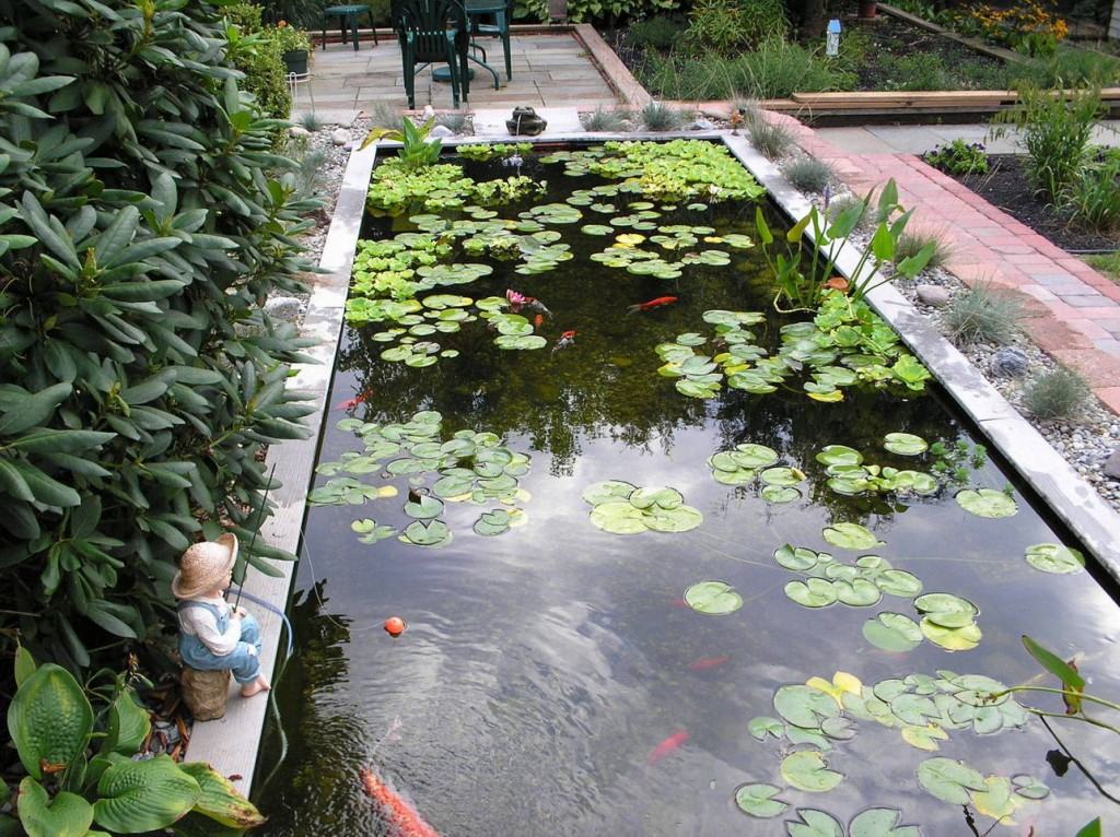 Big Koi Fish Pond Design Ideas