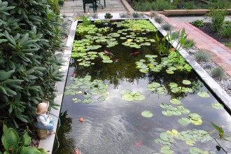 Big Koi Fish Pond Design Ideas in Plants