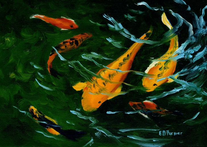 Koi fish painting 8 amazing giant koi fish for sale for Giant koi for sale