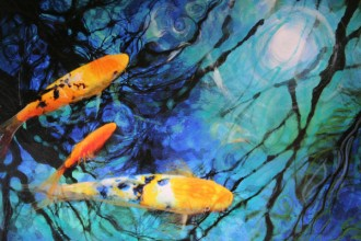 Koi Pond Fish in Plants