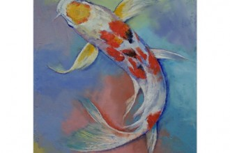 butterfly koi fish in Dog