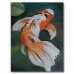 butterfly koi , 6 Lovely Koi Butterfly Fish In pisces Category