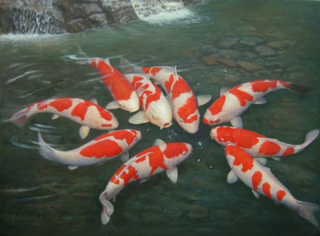 Koi aquarium fish 8 wonderful koi fish tanks for Koi reproduction