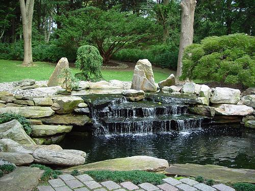 Koi fish ponds 8 charming koi fish ponds designs for Coy fish pond designs