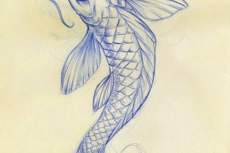 koi fish sketch in Birds